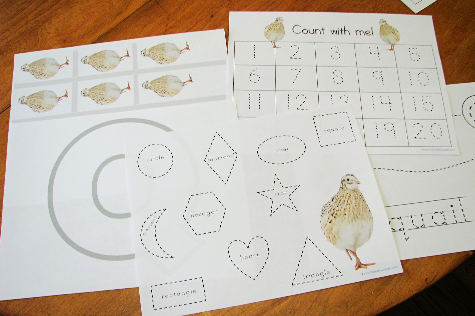 Mommy S Little Helper Letter Q Quails Preschool Theme