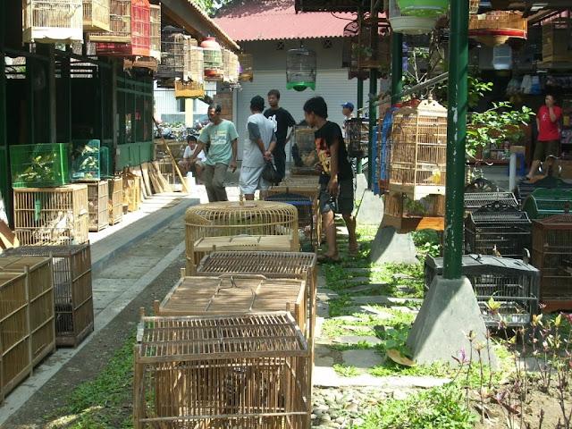 Interaksi pedagang dan pembeli di pasar burung