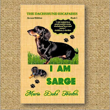 I AM SARGE - Book 1 (Second Edition)