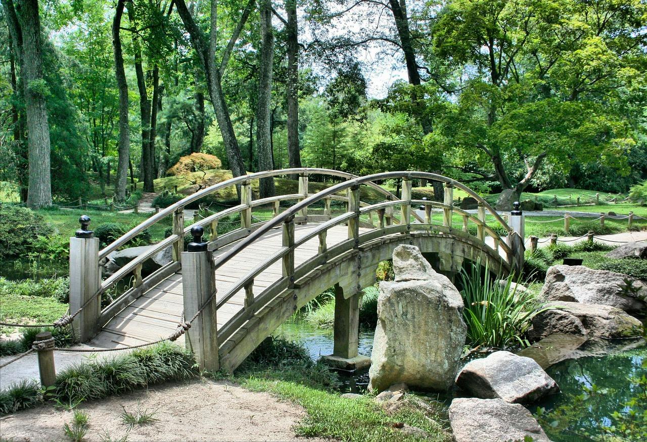 oczko-wodne-w-ogrodzie-inspiracje-staw