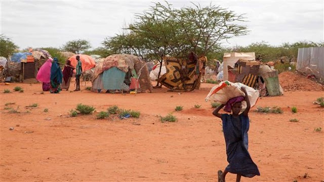 Emergency food will run out in drought-hit Ethiopia by next month, warn aid agencies