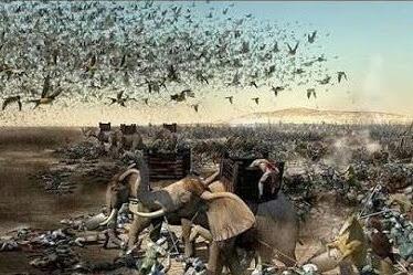 Kisah Perang Pasukan Gajah dengan Burung Ababil, Kelahiran Nabi Muhammad SAW