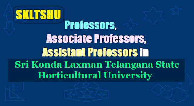 Professors, Assistant/Associate Professors Recruitment in Telangana State Horticultural University