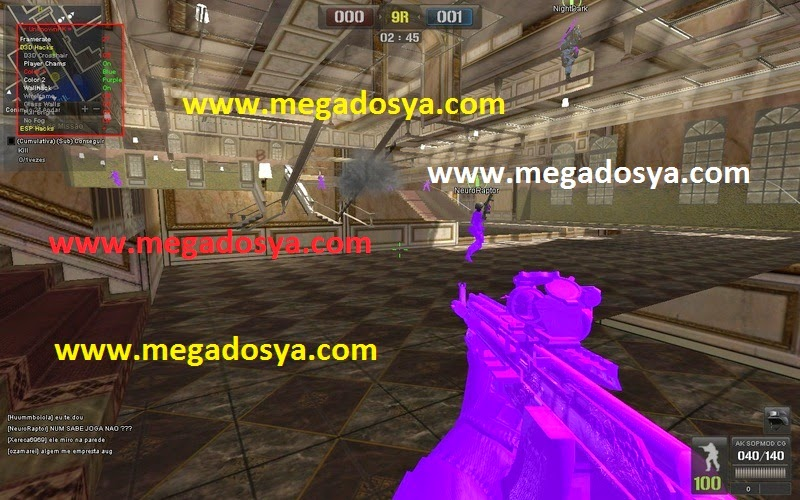 pointblank2011072323075 Point Blank Extreme Loader Wallhack Aimbot Menü indir   Download