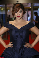 Payal Ghosh aka Harika in Dark Blue Deep Neck Sleeveless Gown at 64th Jio Filmfare Awards South 2017 ~  Exclusive 088.JPG