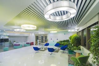Dùng cây xanh trong thiết kế văn phòng nhằm hạn chế bí bách của không gian làm việc