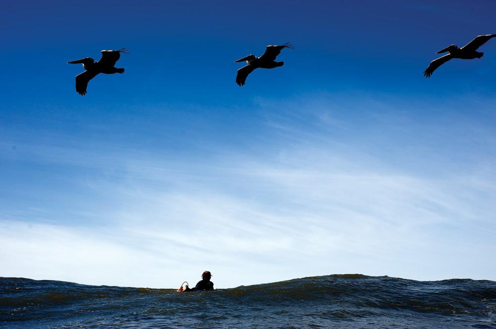 surfear solo