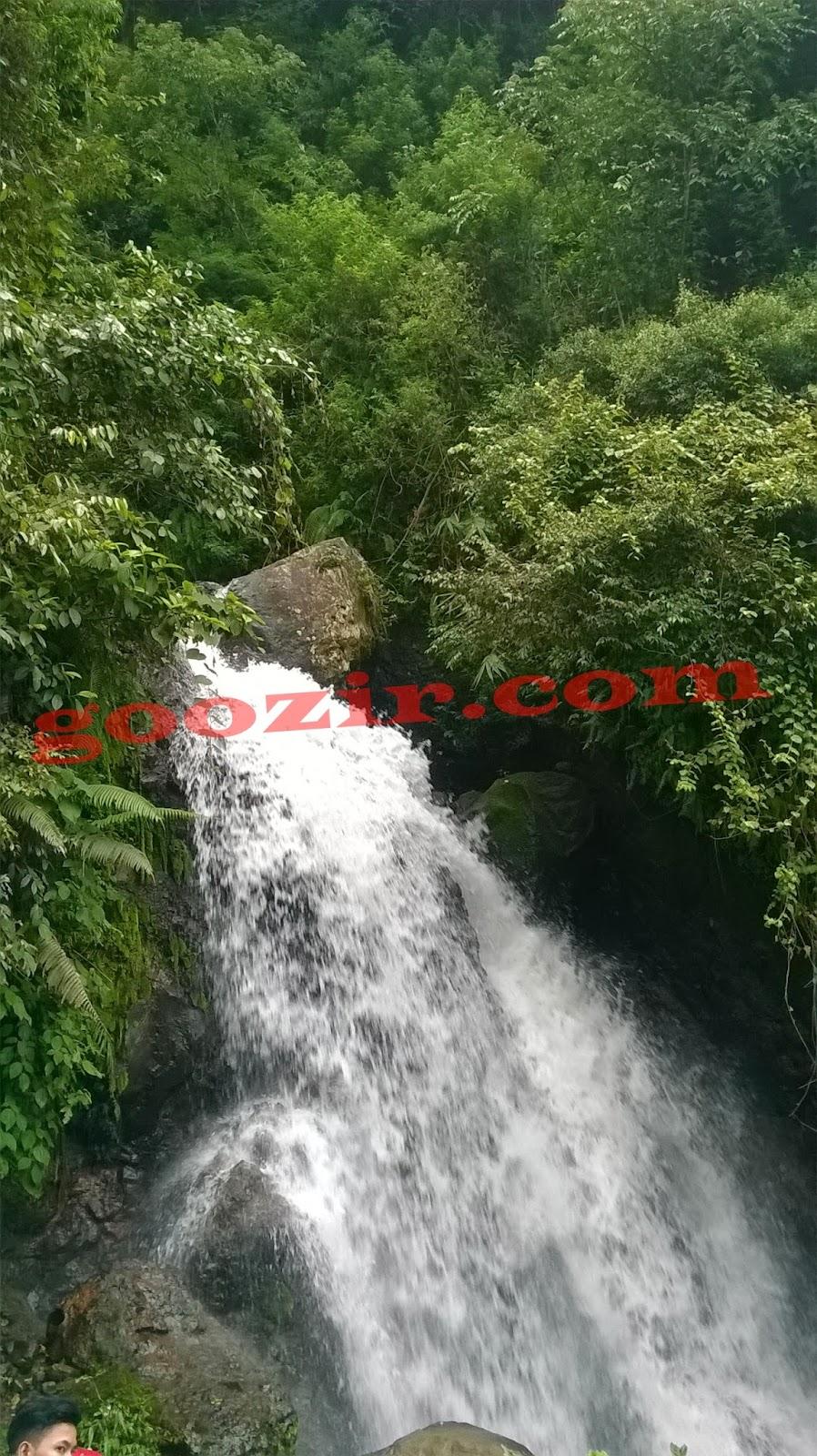 www.goozir.com