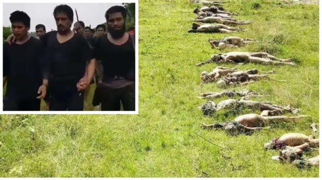 Mass Grave of 28 Hindus Massacred by Rohingyas Found