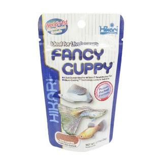 Gambar Ocean Free Super Guppy
