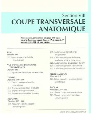 Télécharger Livre Gratuit Coupes transversales anatomiques pdf
