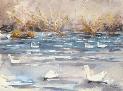 Dordogne River Study 2- swans at lalinde