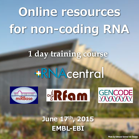 New training course: Online resources for non-coding RNA