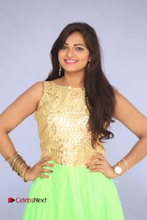 Actress Aswini Pictures at Ameerpetalo Audio Success Meet  0049.JPG