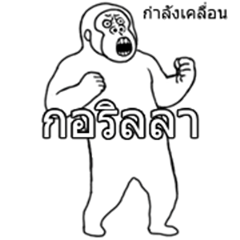 Moving Golila Thai