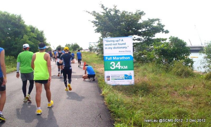 Standard Chartered Marathon Singapore (SCMS) 2012 | Team FatBird
