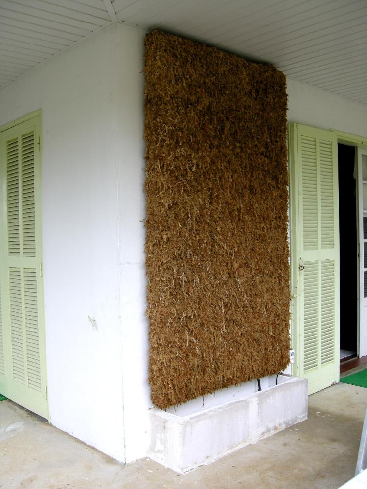 caledogreen murs v g taux mur v g tal support mousse de sphaigne. Black Bedroom Furniture Sets. Home Design Ideas