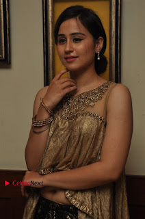 South Indian Celebrities Pos at Love For Handloom Collection Fashion Show  0035.jpg