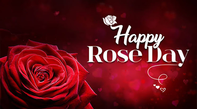 Happy rose day quotes images
