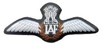 IAF Pilot's Badge