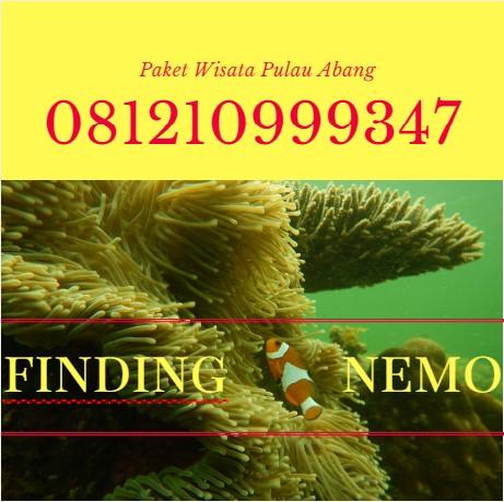 081210999347, Pulau Abang Batam Kepri Kepulauan Riau, paket wisata pulau abang batam, cara ke pulau abang batam, penginapan di pulau abang batam, pulau abang snorkeling, travel ke pulau abang, biaya ke pulau abang batam