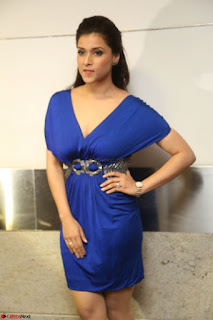 Mannara Chopra in Short Blue Dress at Rogue Movie Teaser Launch 1st March 2017 129.JPG