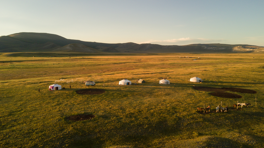 mongolia wilderness