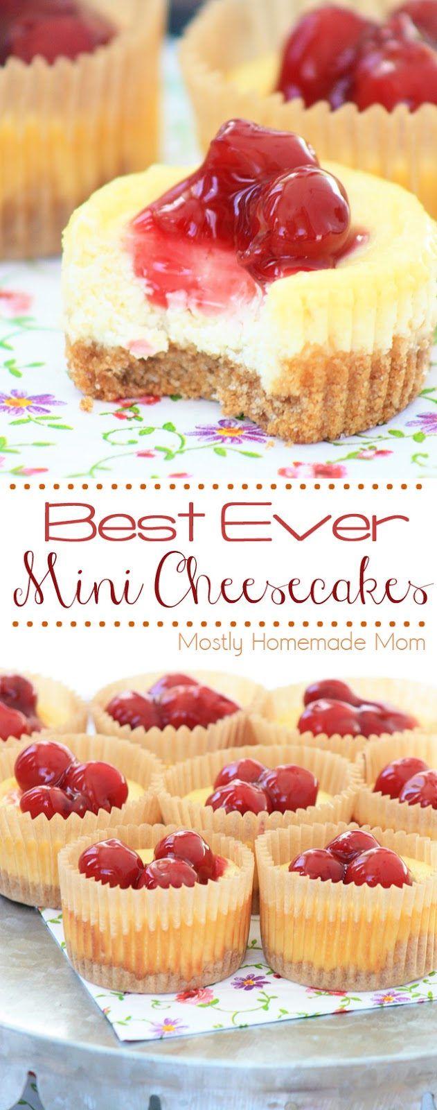 Best Ever Mini Cheesecakes - VIDEO post | Mostly Homemade Mom