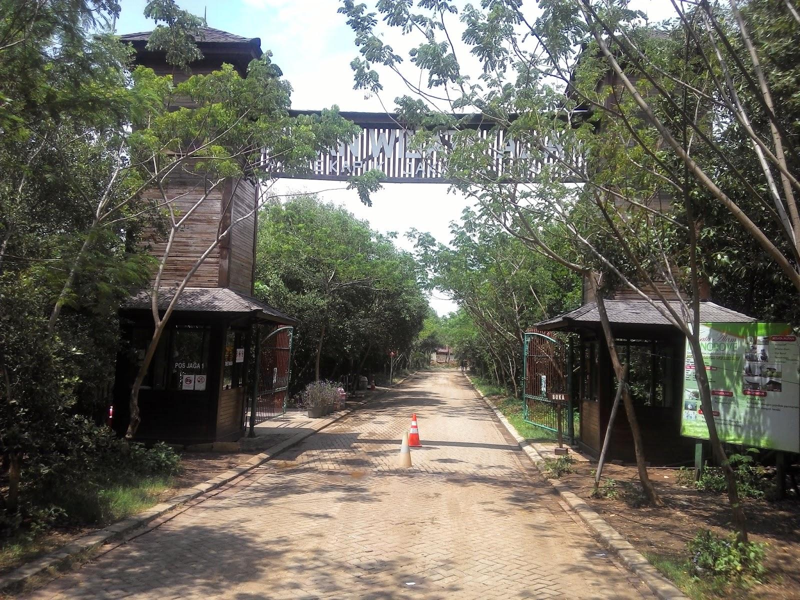Little Khay: Ke Hutan Mangrove Pantai Indah Kapuk Yoookkk..