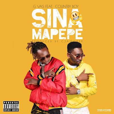 G vas Ft. Country Boy – Sina Mapepe