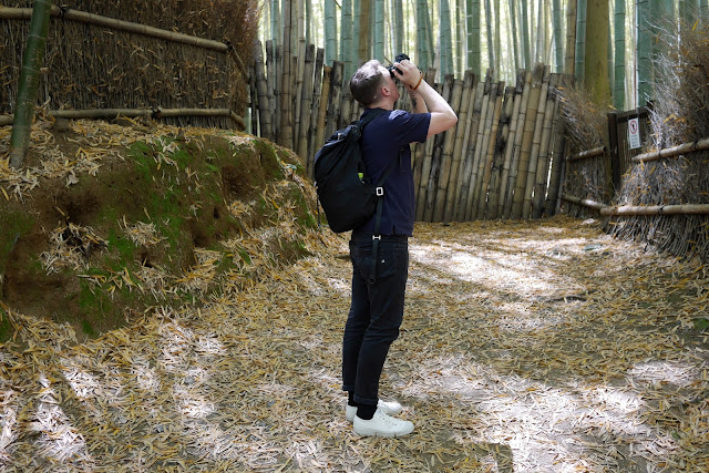 bamboo forest in kyoto japan with british designer dan marc