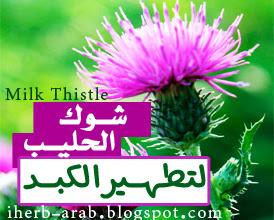 حبوب عشبة حليب الشوك الحرشوف والخرفيش لتطهير الكبد من اي هيرب