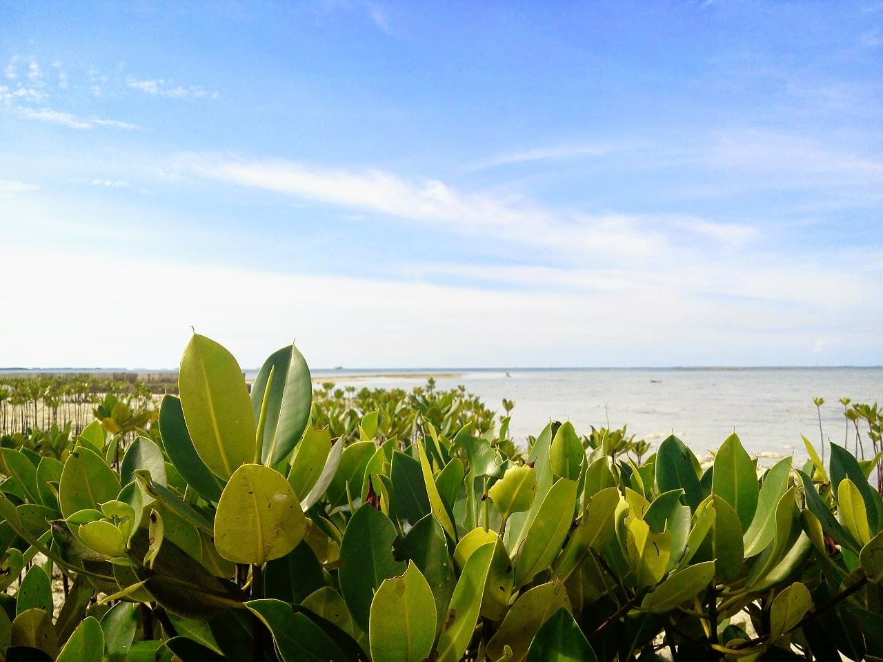 Pulau Indah, Kepulauan Seribu, Pulau Karya