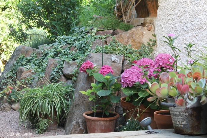 Las hortensias esas peque as grandes flores guia de jardin - Variedades de hortensias ...