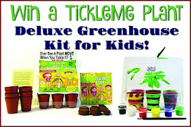 TickleMe Plants Giveaway!