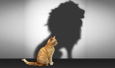 Cara mengatasi rasa aib dan meningkatkan kepercayaan diri 7 Tips & Cara Percaya Diri Untuk Kamu Yang Terlalu Pemalu
