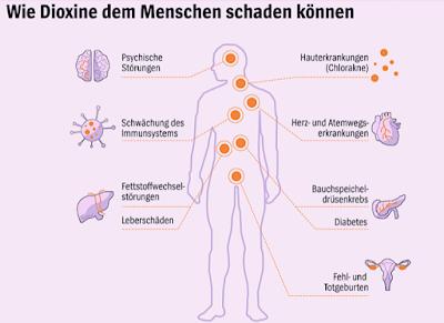 mögliche Schäden Dioxinvergiftunng