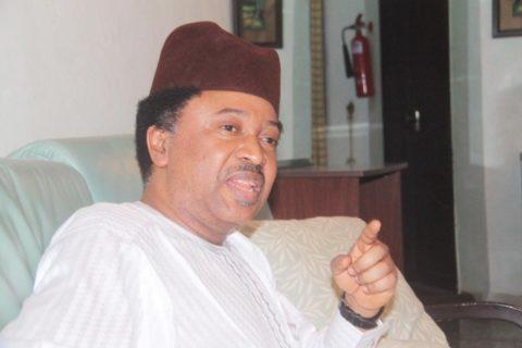 Shehu Sani Reacts To Buhari's Call For Reversal Of Oyegun's Tenure Extension
