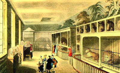 Regency History The Royal Menagerie At The Exeter Exchange