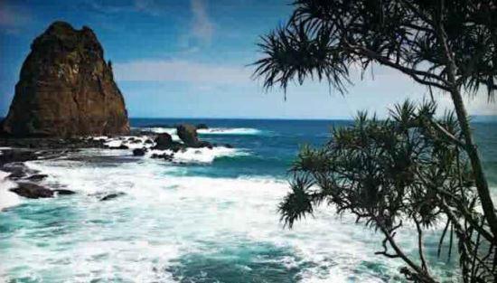 Pantai pasir putih malikan wisata di jember