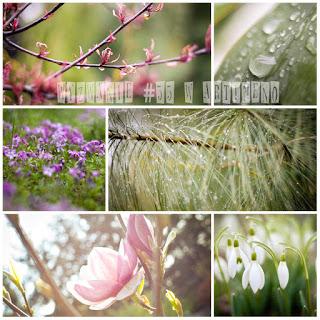 http://artimeno.blogspot.com/2017/04/wyzwanie-55-krople-rosy.html