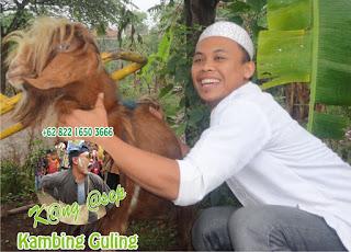 Layanan Kambing Guling di Lembang