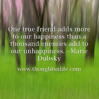 One true friend adds more to our happiness than a thousand enemies add to our unhappiness. ~Marie Dubsky