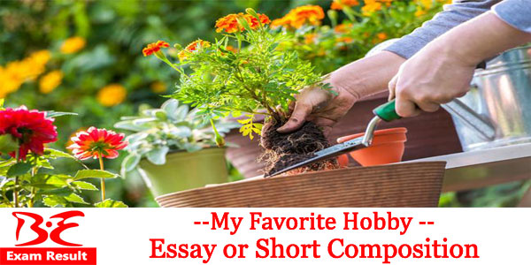 my favorite hobby essay or short composition be exam result my favorite hobby essay or short composition