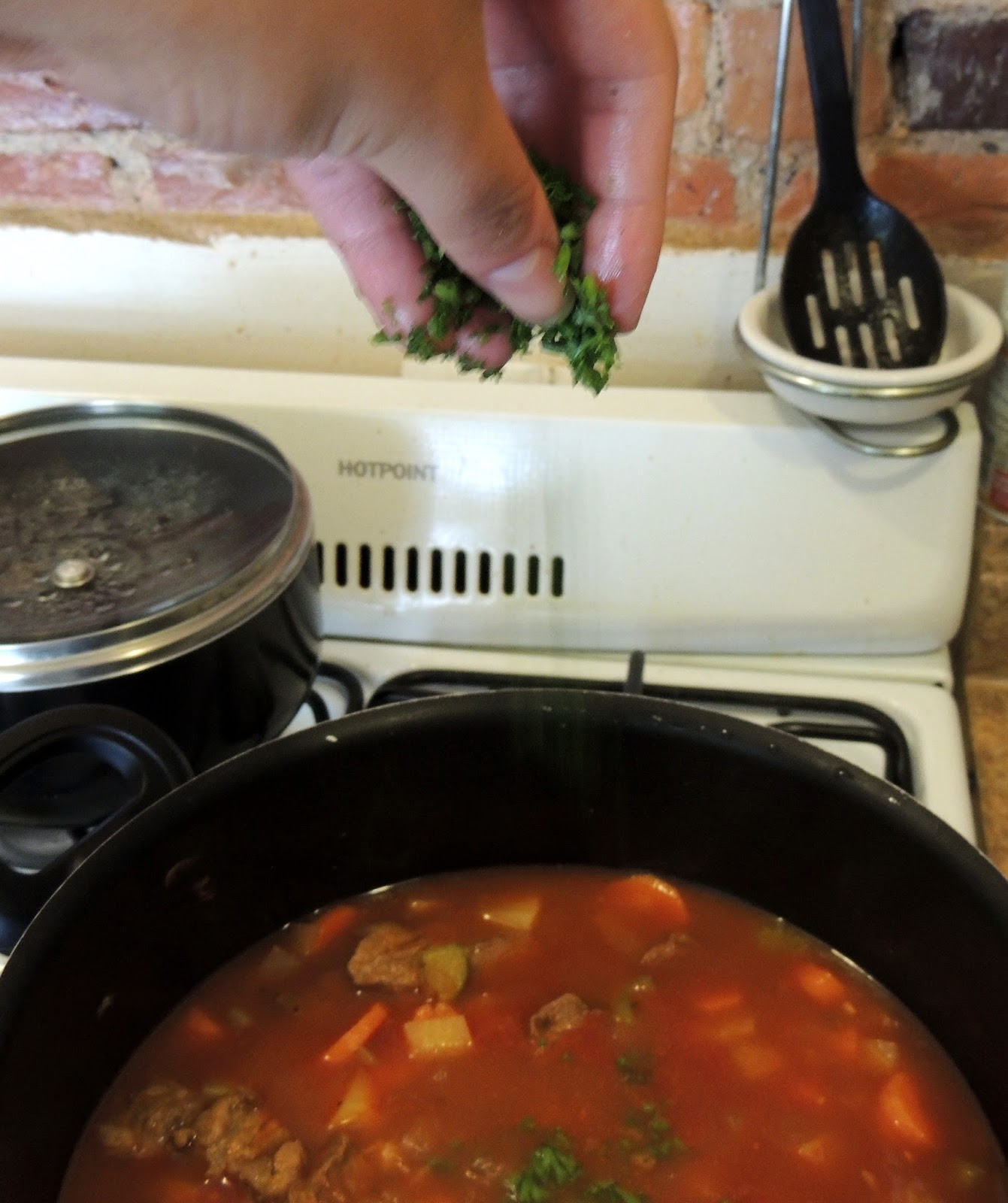 Gas Stove Girl: Home-style Beef Stew