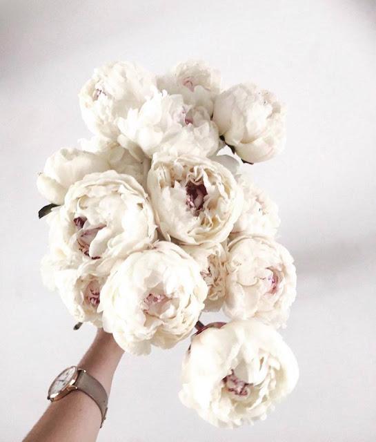 brisbane wedding florals flowers bridal bouquet installations