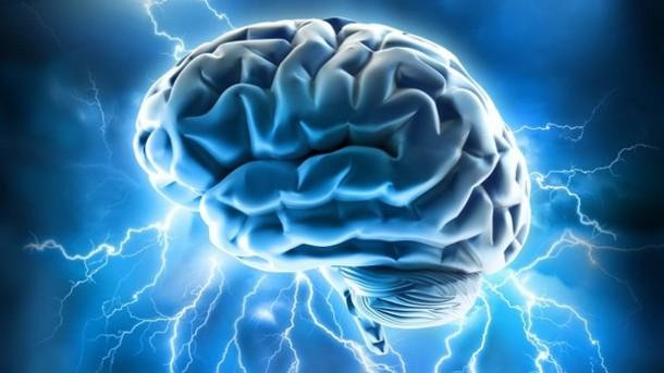 Apa Perbedaan Otak Kanan dan Otak Kiri?