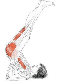 Viparitakarani yoga pose,yoga for thyroid