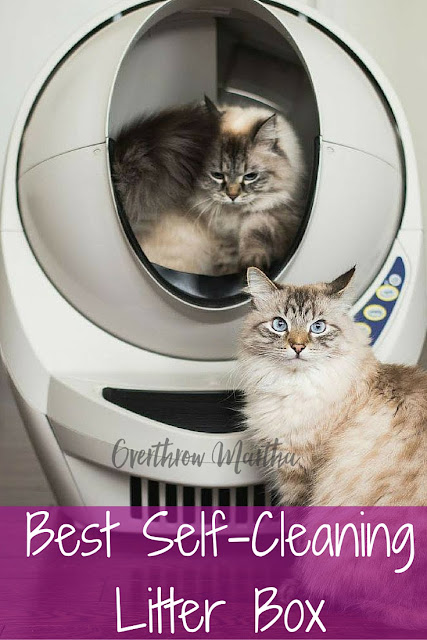 Litter Robot Review and $25 off your purchase
