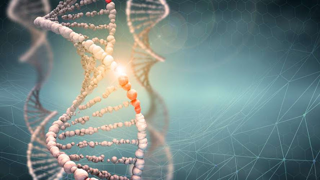 Hallan error genético que aumenta riesgo de impotencia sexual